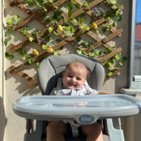 Kiwi Koala All in One Katlanır Tekerlekli Mama Sandalyesi - Gray photo review